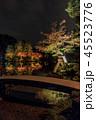 兼六園 ライトアップ 紅葉の写真 45523776