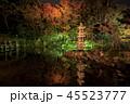 兼六園 ライトアップ 紅葉の写真 45523777
