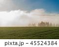 朝霧 就実の丘 早朝の写真 45524384