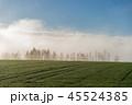 朝霧 就実の丘 早朝の写真 45524385