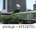 東京の連絡通路 45528701