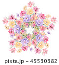 45530382