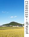 農村 田んぼ 田舎の写真 45538912