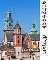 ヴァヴェル 大聖堂 クラクフの写真 45542206