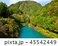宝仙湖 風景 自然の写真 45542449