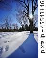 雪景色 45543146