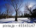 雪景色 45543147