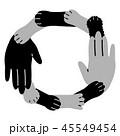 動物と人間 協調 デザイン 45549454