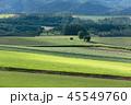 北海道 風景 美瑛の写真 45549760