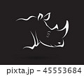 サイ さい 犀のイラスト 45553684