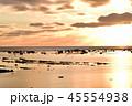 鵜ノ崎海岸 風景 自然の写真 45554938