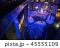 クリスマス 日本 ネオンの写真 45555109