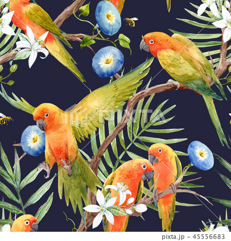 Watercolor tropical parrots pattern 45556683