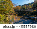 御岳渓谷 奥多摩 秋の写真 45557980