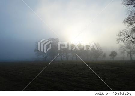 朝霧に包まれた安曇野  安曇野市 45563256