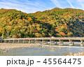 嵐山 紅葉 渡月橋の写真 45564475