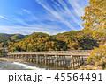 嵐山 紅葉 渡月橋の写真 45564491