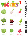 野菜 料理 具のイラスト 45566096