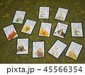 カード ゲーム 日本の写真 45566354