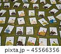 カード ゲーム 日本の写真 45566356