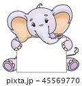ゾウ 象 動物のイラスト 45569770