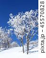 雪景色 冬 霧氷の写真 45570828