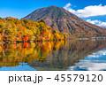 《栃木県》秋の日光・男体山と八丁出島の紅葉《中禅寺湖より》 45579120