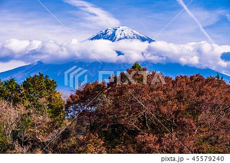 【静岡県】白糸ノ滝 富士山 紅葉 45579240