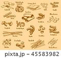 パスタ タイプ 種類のイラスト 45583982