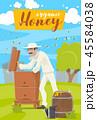 養蜂 養蜂家 ベクトルのイラスト 45584038