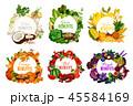 くだもの フルーツ 実のイラスト 45584169
