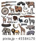 狩り 狩猟 狩のイラスト 45584170