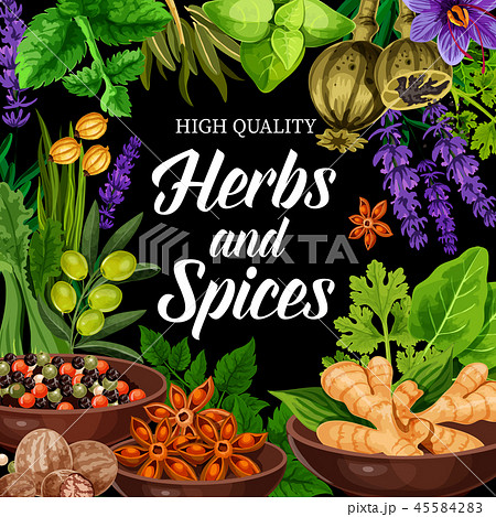 Seasonings, herbs and spices shop. Vector poster 45584283