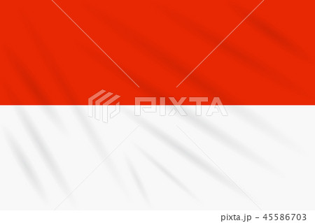 Flag Indonesia swaying in wind, realistic vector 45586703