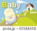 Baby 45588456