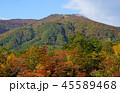 鳴子峡 紅葉 秋の写真 45589468