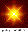 45589729
