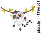 キツネザル 動物 緑の葉のイラスト 45590198