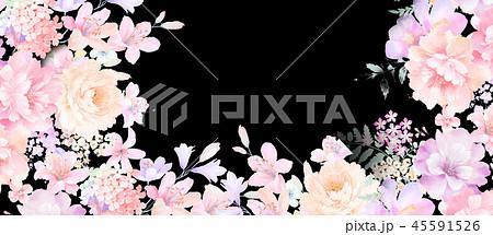 花 フラワー お花 45591526
