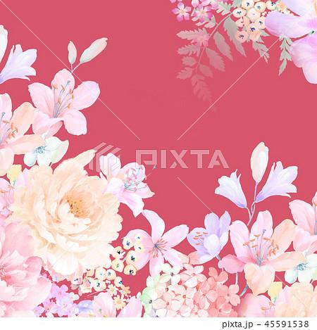 花 フラワー お花 45591538
