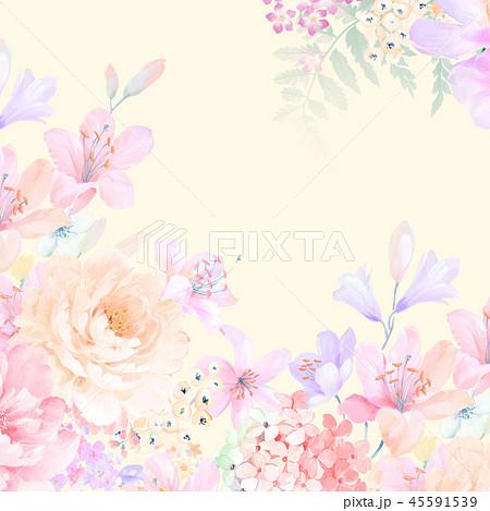 花 フラワー お花 45591539