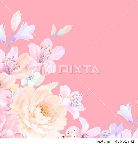 花 フラワー お花 45591542