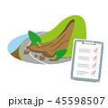 土砂崩れ 道 点検のイラスト 45598507