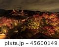 将軍塚 紅葉 ライトアップの写真 45600149