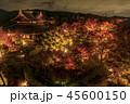 将軍塚 紅葉 ライトアップの写真 45600150