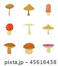 きのこ キノコ マッシュルームのイラスト 45616438