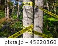 危険な場所に張り巡らされた「立入禁止」のバリケードテープ 45620360