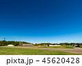 三内丸山遺跡 遺跡 縄文遺跡の写真 45620428