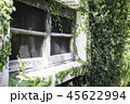 Ivy around brick house in local resort 45622994