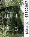 Ivy around brick house in local resort 45622997